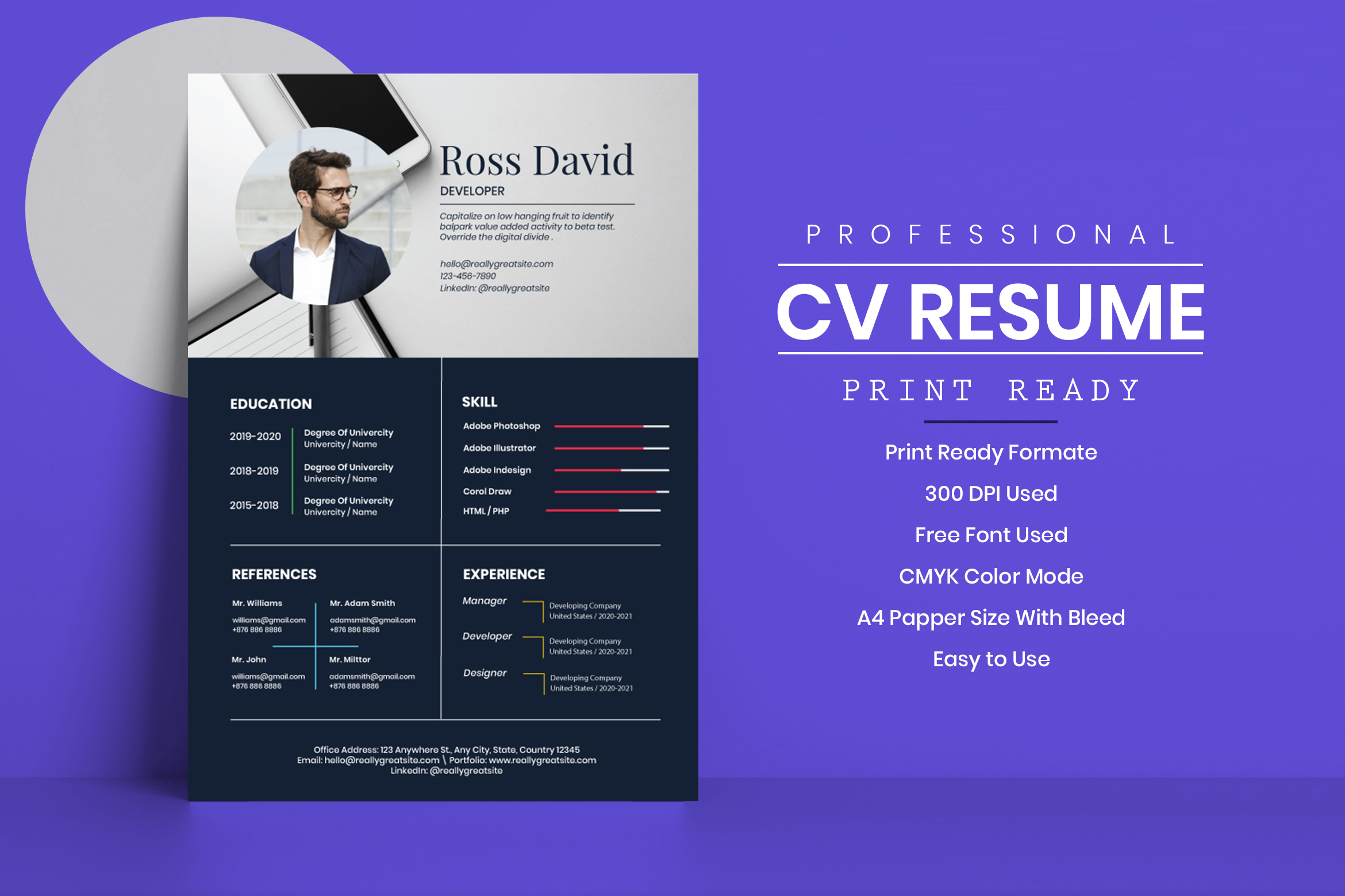 One Page Professional CV Template